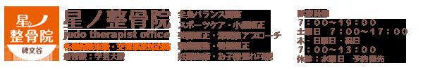 碑文谷 星ノ整骨院のサイト